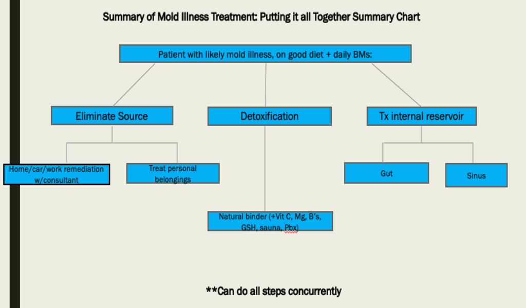 Simple But Effective Treatment of Mold Toxicity -