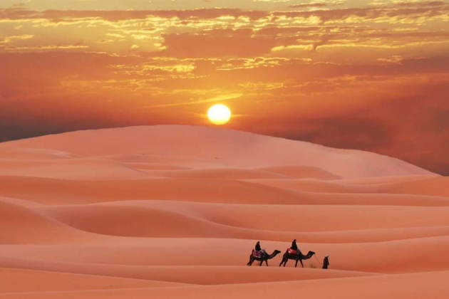 Сафари в пустыне с ужином
