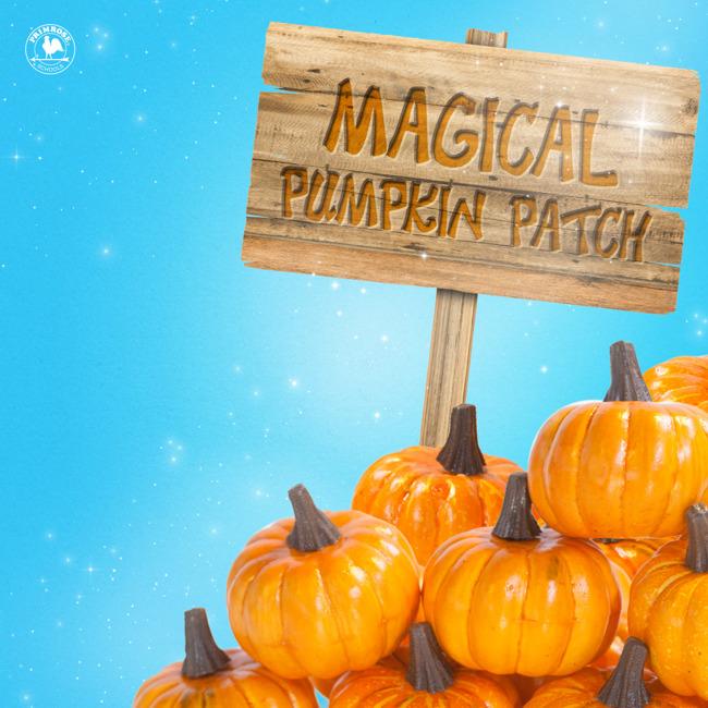 magical pumpkin patch garden Halloween