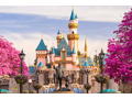 2 passes to Disneyland or California Adventure