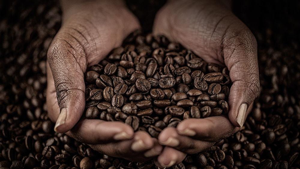 3Mosin-Coffee-hands-WEB.jpg