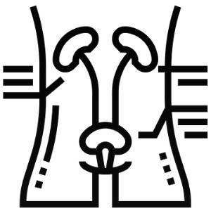 Urinary benefits