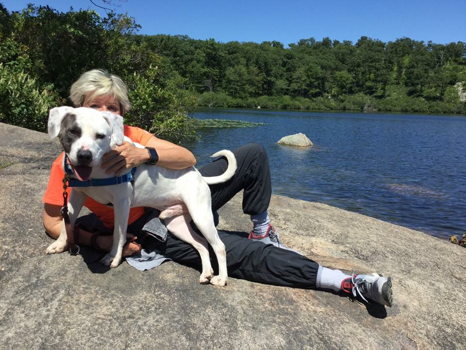 Hike & Hounds!  Hike with Our Dogs and Your Friends