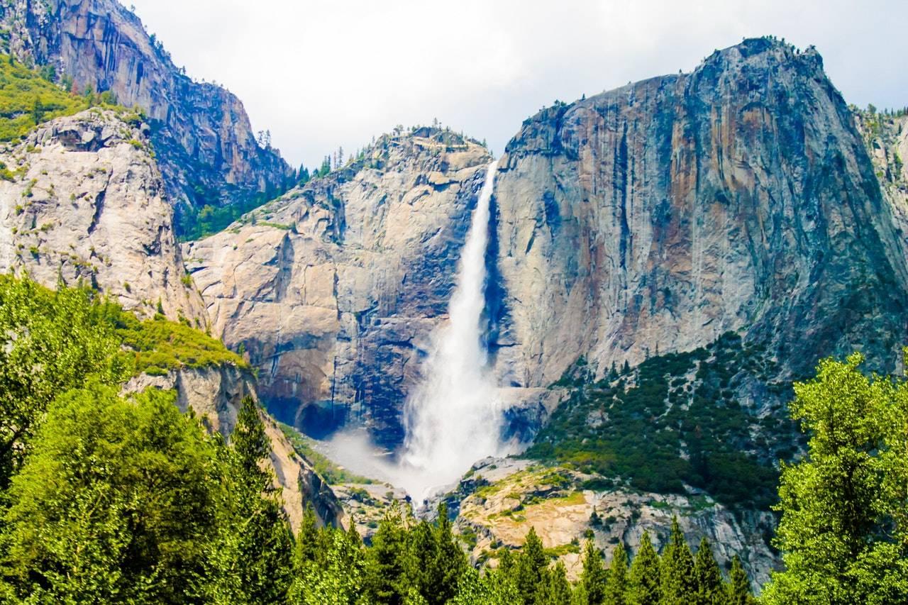 BeanBear Waterfall