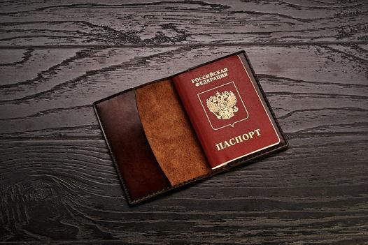 Обложка для паспорта Х1