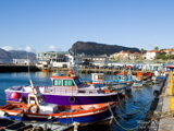 Travelling to kalk bay and property.jpg