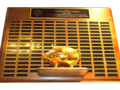 Your Name Engraved on Fuller the Golden Pig!