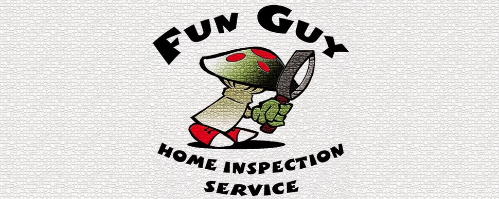 Fun Guy Inspection & Consulting