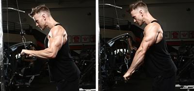Triceps Push Downs