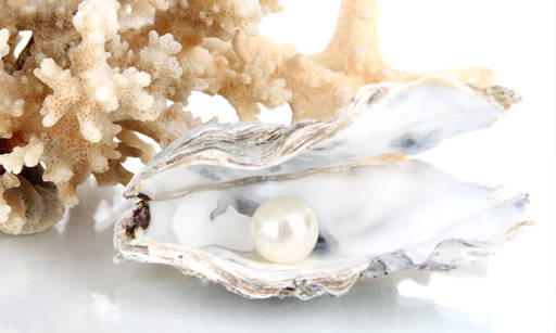 Pearl Rich in amino acids, mineral salts and micro elements. It strengthens