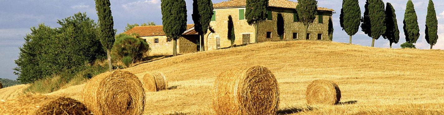 По винным дорогам Тосканы