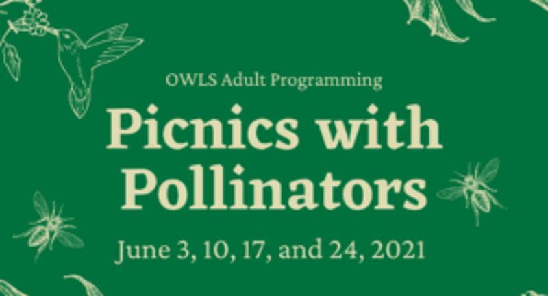 Picnics with Pollinators