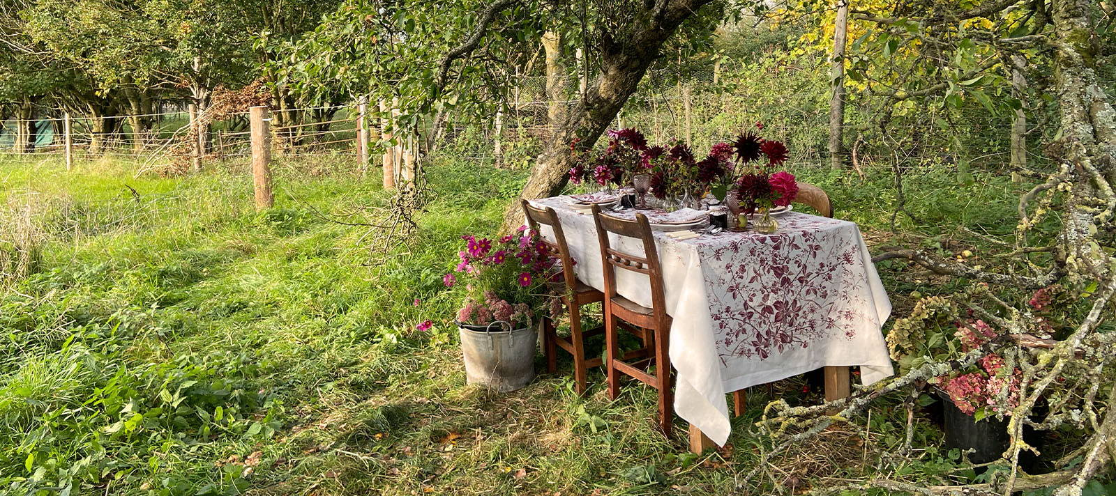The perfect picnic spot under an apple tree - a tablescape with YOLKE Home and Kitten Grayson Flowers