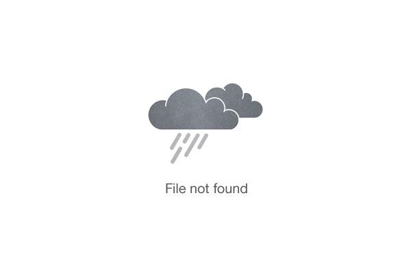 tony-thompson-video
