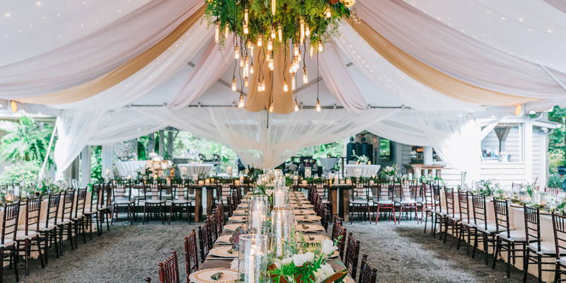 What You Need to Plan a Backyard or Blank Space Wedding