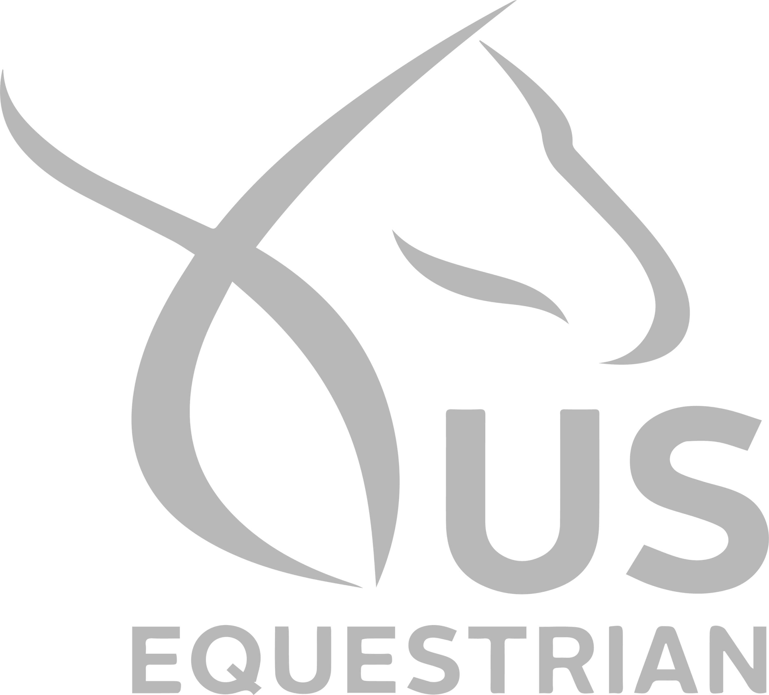 FlyFixed on US Equestrian. Best Outdoor Fly Catcher.