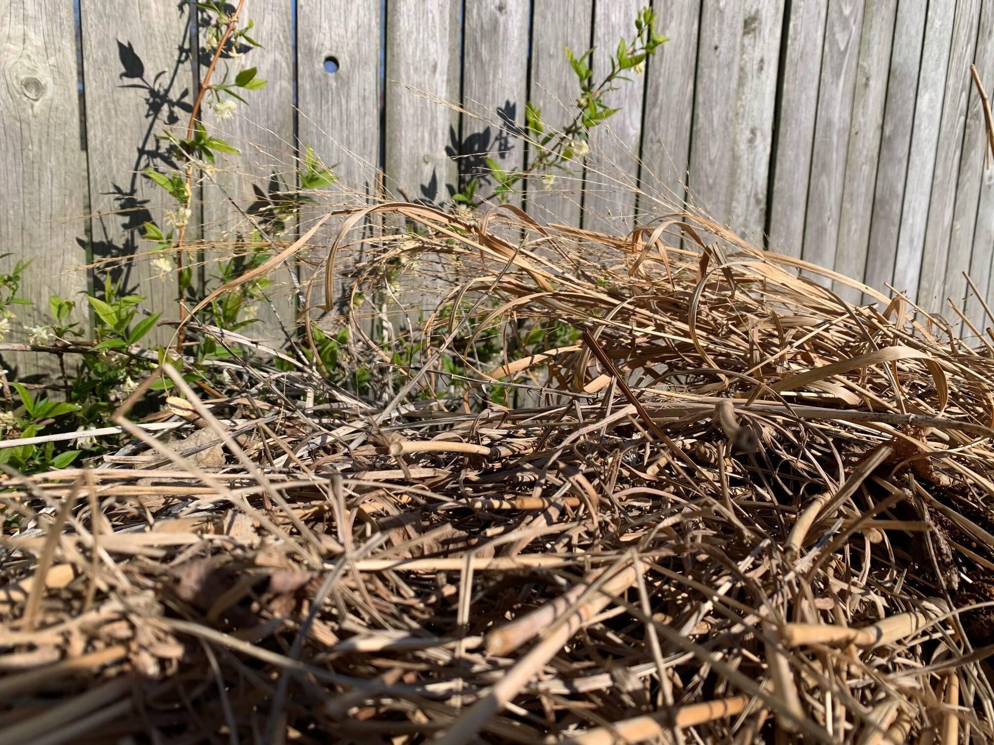 Pile of plant debris in a garden