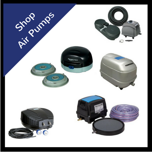Shop Koi Pond & Water Garden Air Pumps