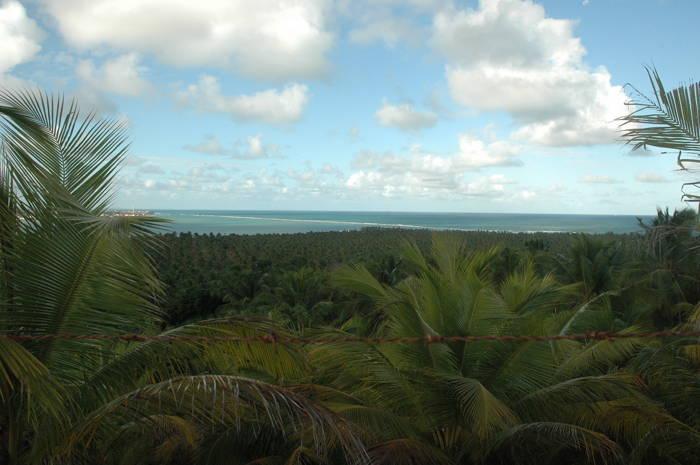 DUBBI adicionou foto de Fortaleza,Mossoró,Natal,Praia de Pipa (Tibau do Sul),João Pessoa,Recife,Maragogi,Maceió,Aracaju,Salvador Foto 9