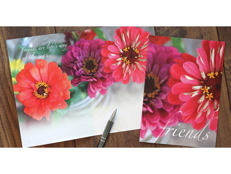 Nature's Bounty Greeting Cards