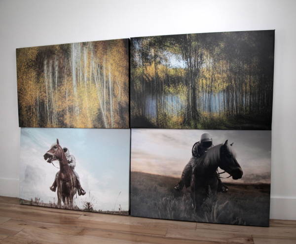 Art & Posters - 4 Part Horses and Forest Canvas Prints