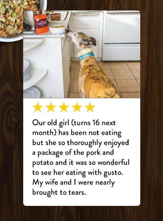 A reivew from someone who has a 16 year old senior dog who only eats Portland Pet Food Company's dog food for senior dogs.