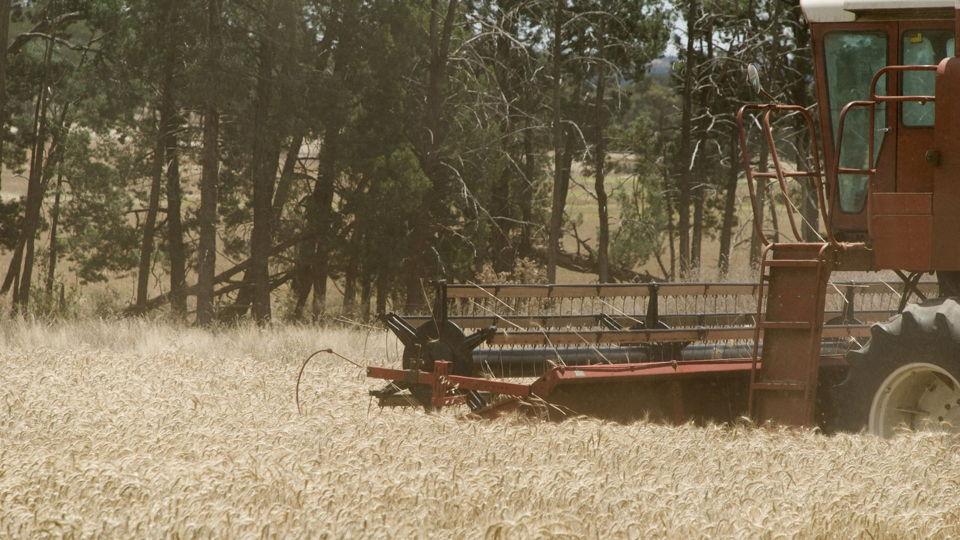 Slimme oplossingen voor Mexicaanse agrosector