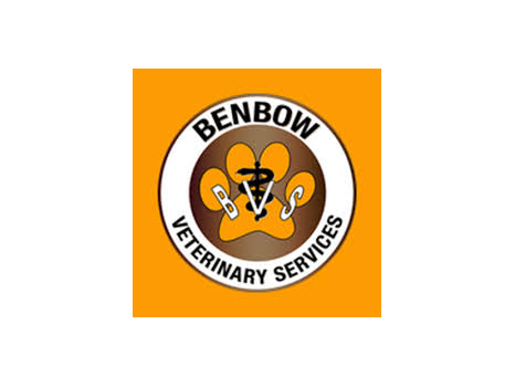 Benbow Veterinary Services-5 Free Acupuncture Sessions with consult