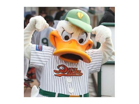 Long Island Ducks Luxury Suite for 20