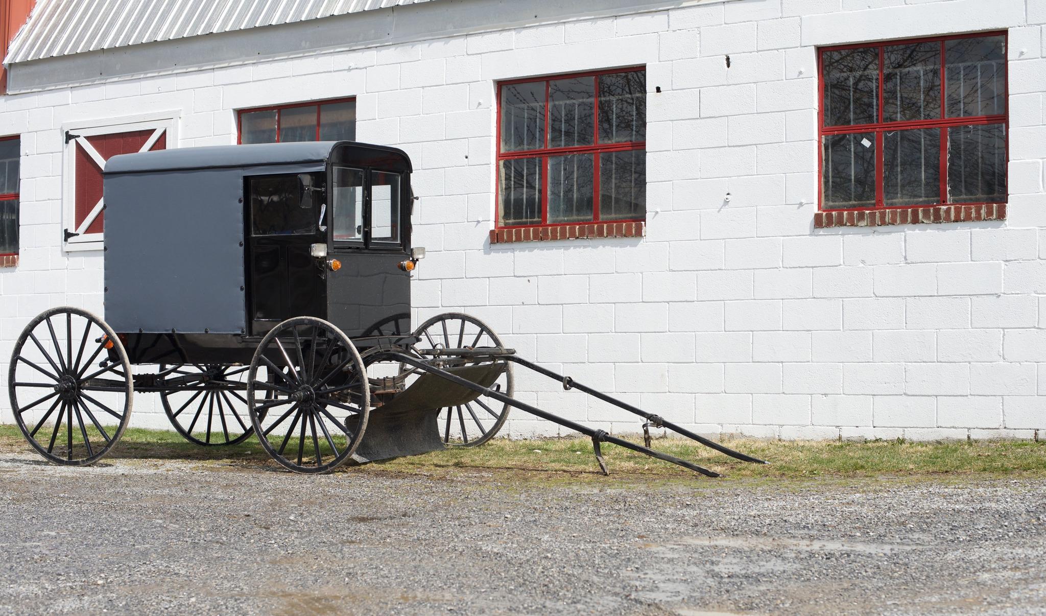 Horse Buggie at Otterbein Acres Farm | Revittle
