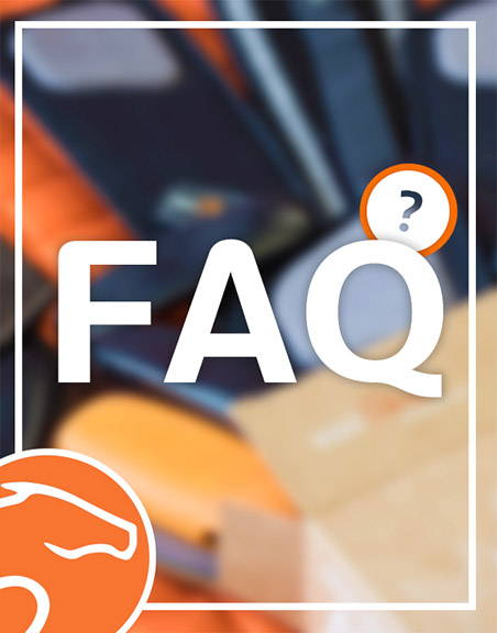 Equisense Motion S FAQ