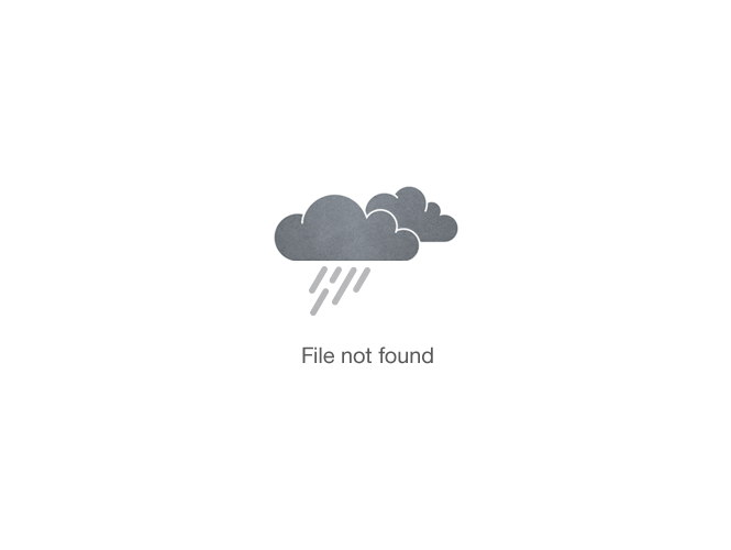 Image may contain: Ginger Chicken Kabobs with Rice recipe.