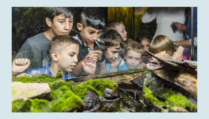 naturkundemuseum kinder mit grasfrosch