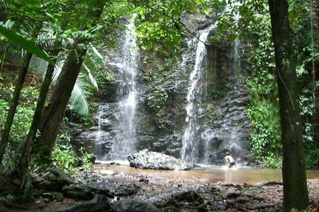 Lanta Jungle Safari