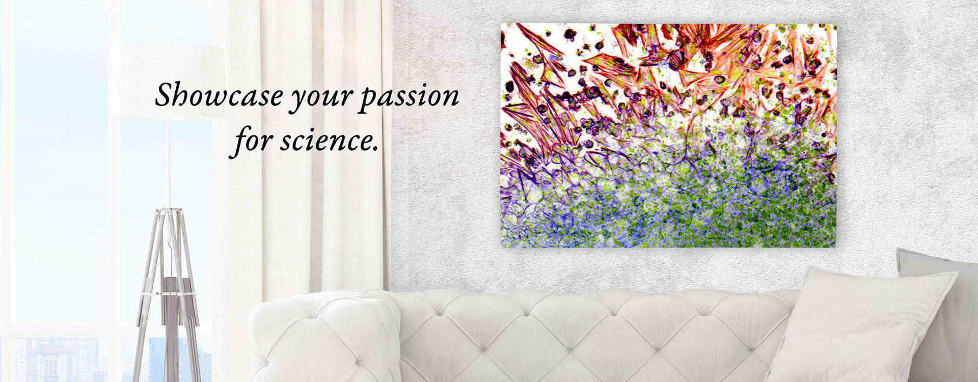 Showcase you passion for science with biology canvas prints.
