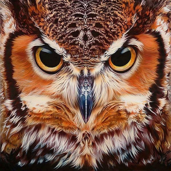 Premium Owl Diamond Painting