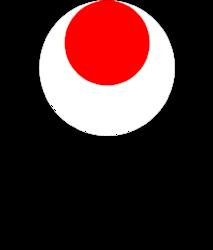 Bærum Shotokan Karateklubb  - Klubbkolleksjon - Treningstøy