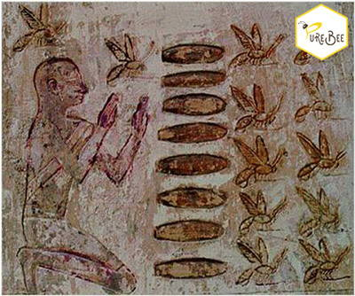 Visualization of honey harvest in tube sticks. This picture was taken in the sun temple of Niuserre in Abusir.
