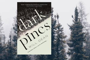 Bi Book Club: Dark Pines