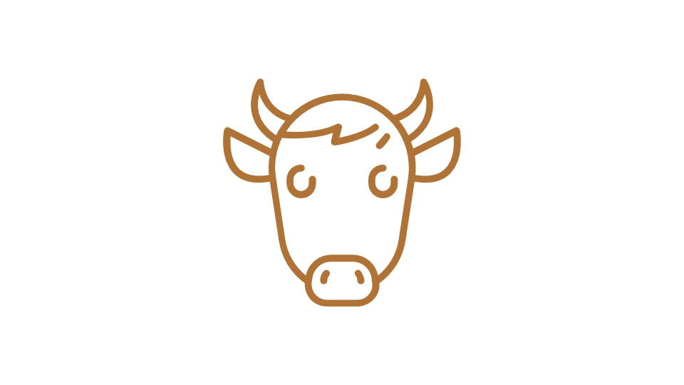 Orange image of a cow - icon style