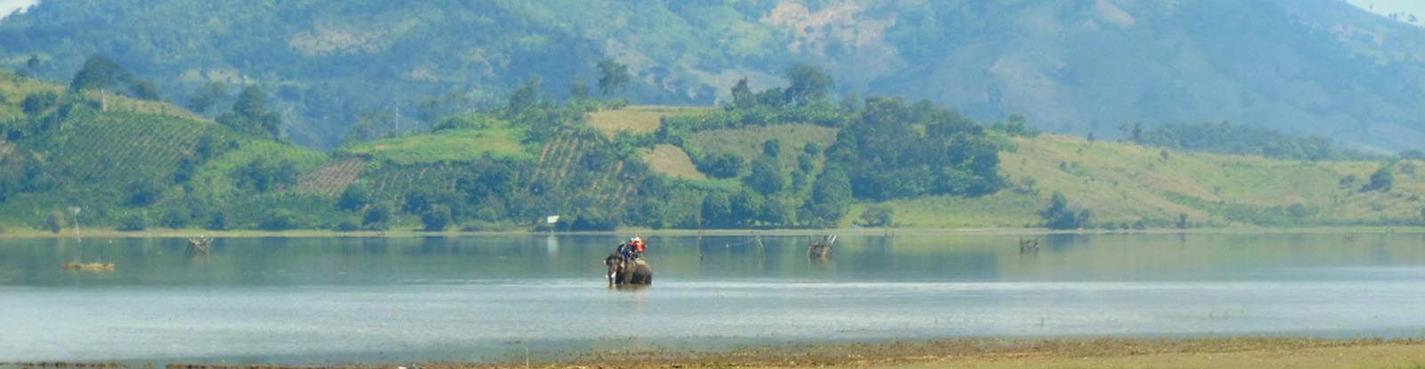 Загородная рыбалка на озере