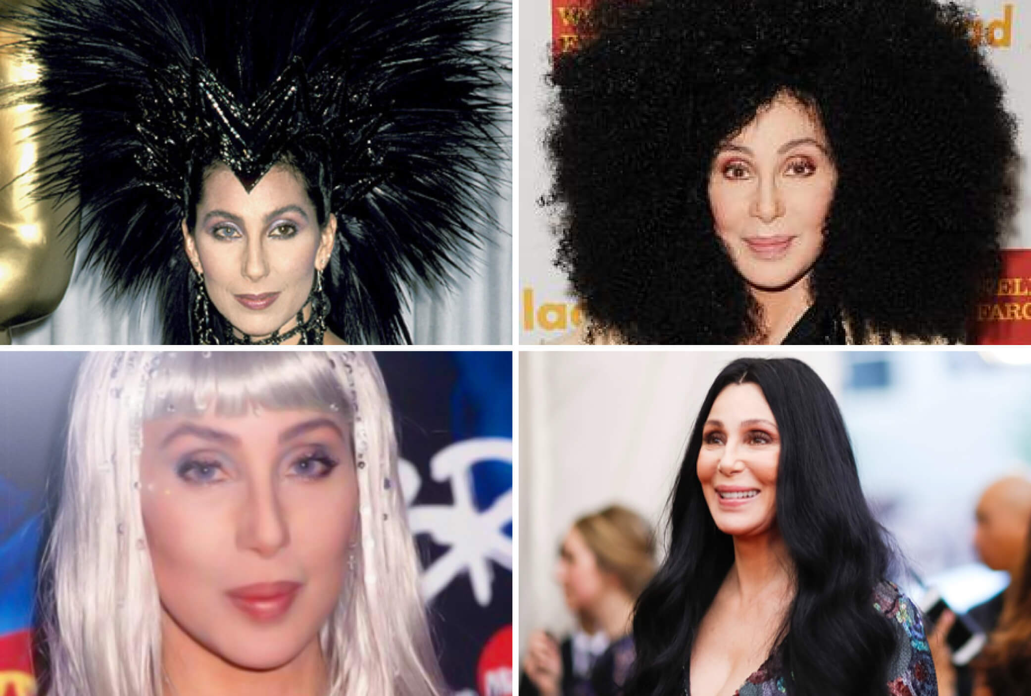 cher iconic wigs