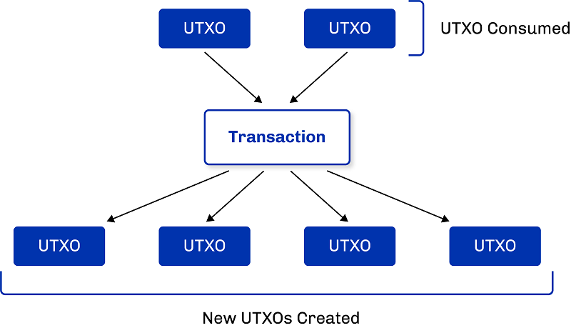Cardano's Extended UTXO accounting model – built to support multi-assets  and smart contracts (part 2) – Cardano Hubs
