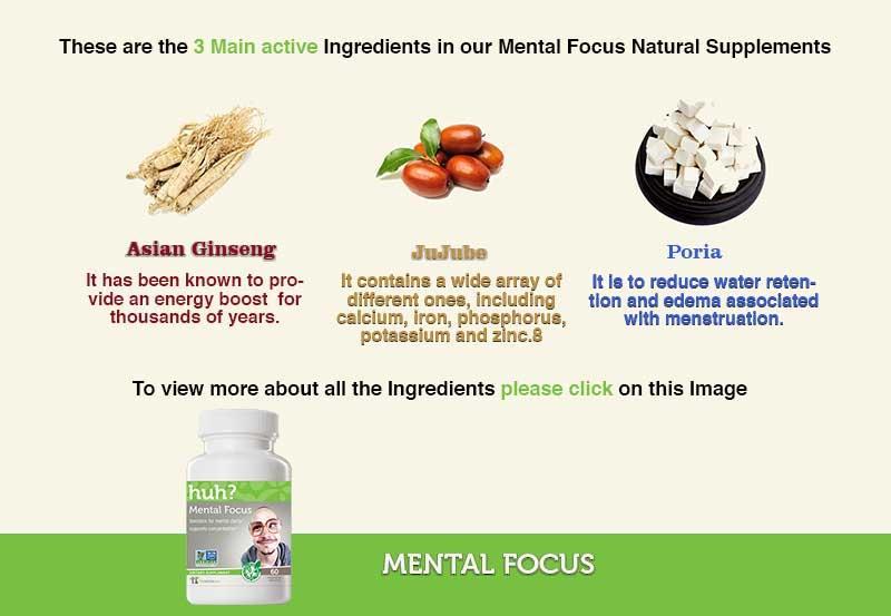 Mental Focus  Ingredients