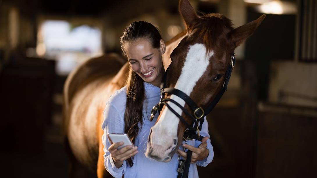 vetevo Wurmstudie für Pferde 2020