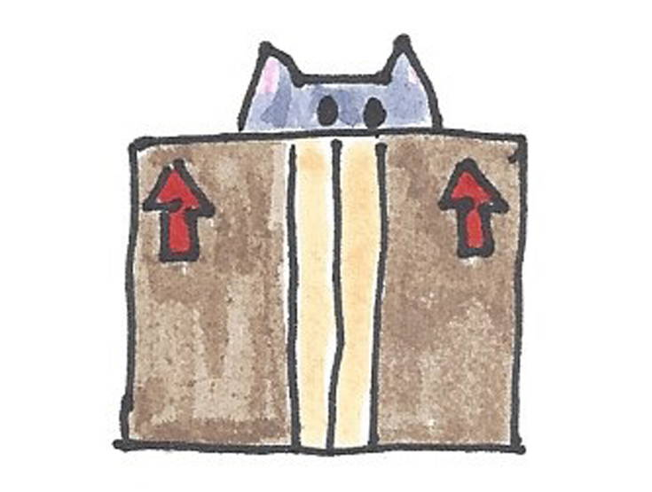 drawing cat behind box