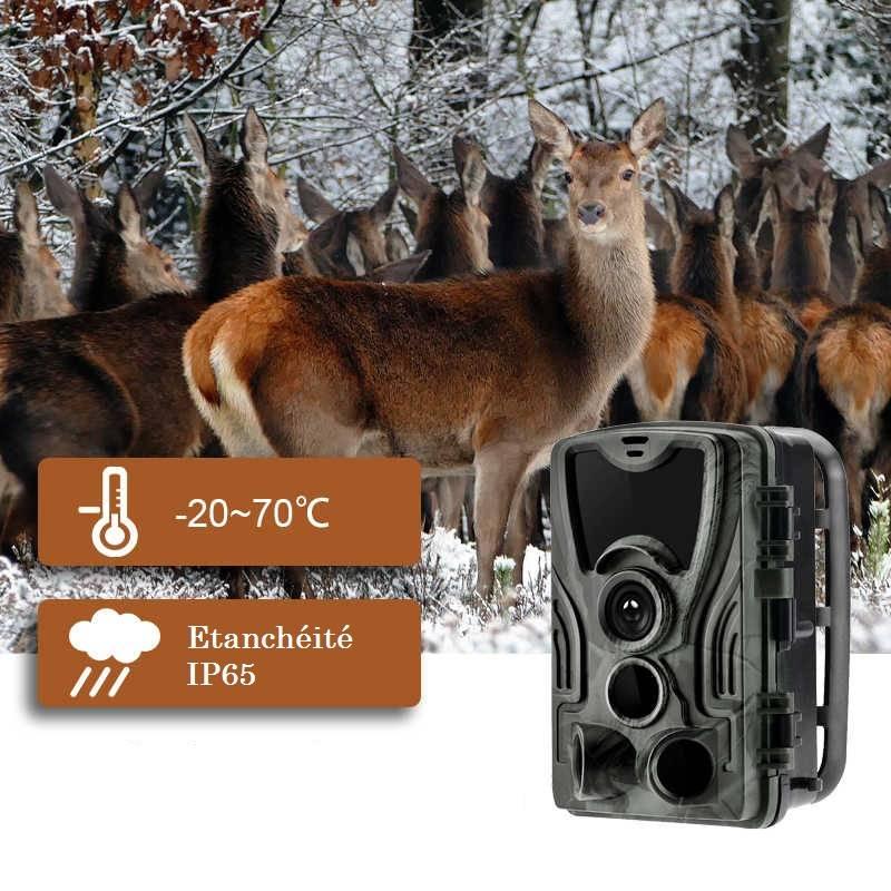 forum caméra de chasse