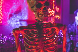 #Boosexual: History Of the Queer Halloween Tradition (Plus Bi Costume Ideas)!