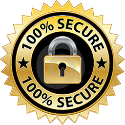 The fancy and dandy store 100 percent secure