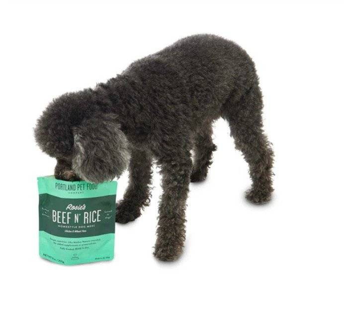 A picky, senior dog eating Rosie's Beef N' Rice Dog Food Topper straight from the pouch.